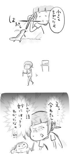 button-only@2x 松本ひで吉の顔はかわいい!結婚や年齢,出身地は?トカゲについても!
